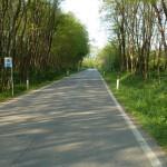 road montello