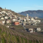 Full immersion in vineyards meticoulously cared for by the producers.